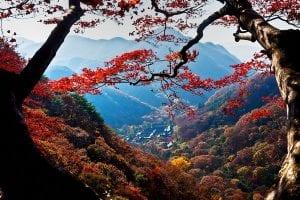 làm visa hàn quốc để du lịch gwangju hàn quốc