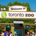 Bất ngờ với vẻ đẹp của vườn thú lớn nhất Canada