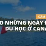 CẨM NANG CHO NHỮNG NGÀY ĐẦU DU HỌC Ở CANADA