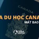 Xin visa du học Canada mất bao lâu?