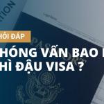 phong-van-dau-bao-lau-co-visa